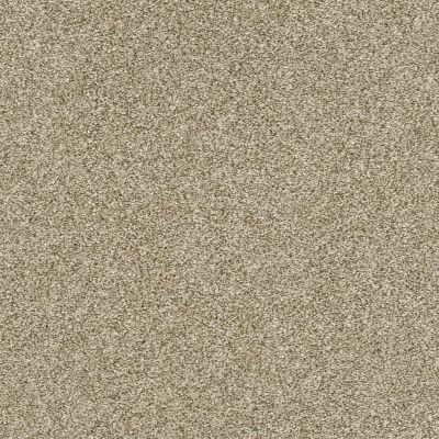 Shaw Floors Bellera Just A Hint II Khaki 00700_E9641
