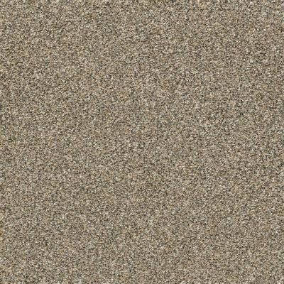 Shaw Floors Bellera Points Of Color I Gold Rush 00200_E9642