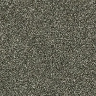 Shaw Floors Bellera Points Of Color I Lush 00303_E9642
