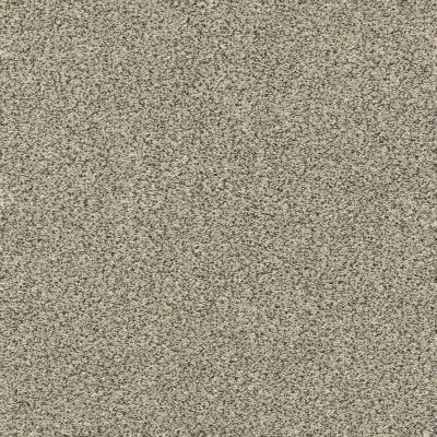 Shaw Floors Perfect Choice Linen GF00110_E9643