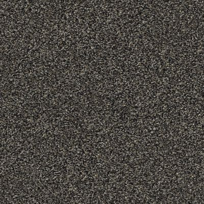 Shaw Floors Bellera Points Of Color II Shadow 00504_E9643