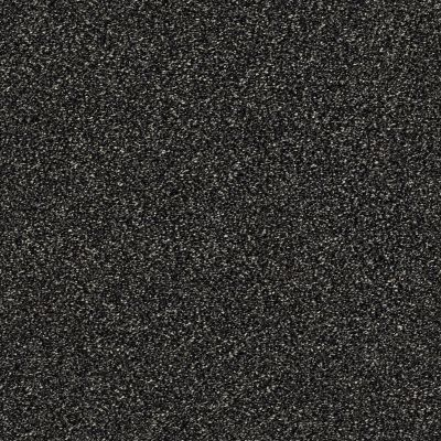Shaw Floors Bellera Points Of Color II Truffle 00506_E9643