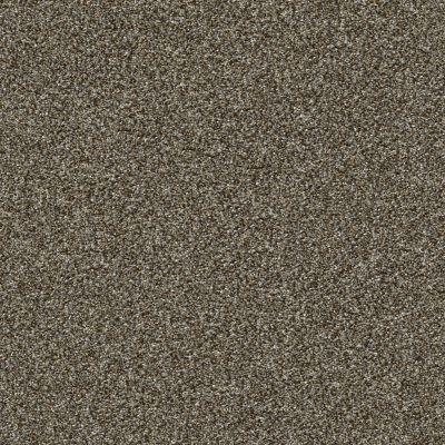 Shaw Floors Bellera Points Of Color II Mahogany 00702_E9643