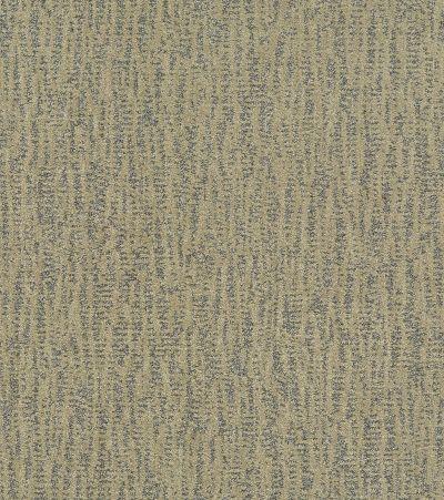 Shaw Floors Bellera Obvious Choice Chameleon 00302_E9648