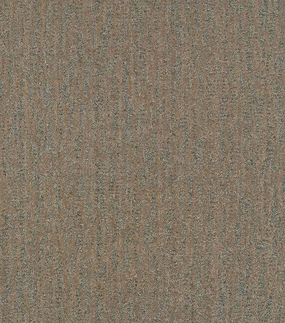 Shaw Floors Bellera Obvious Choice Bronze 00602_E9648
