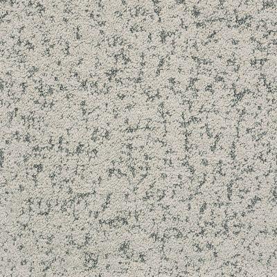 Shaw Floors Bellera Make Your Mark Platinum 00500_E9649