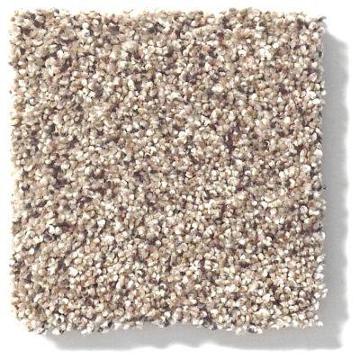 Shaw Floors Value Collections Platinum Texture Accents Net Art District 00186_E9665