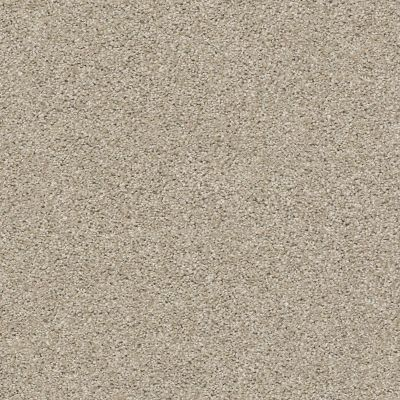 Shaw Floors Value Collections Save The Date Net Grecian Stone 00172_E9670