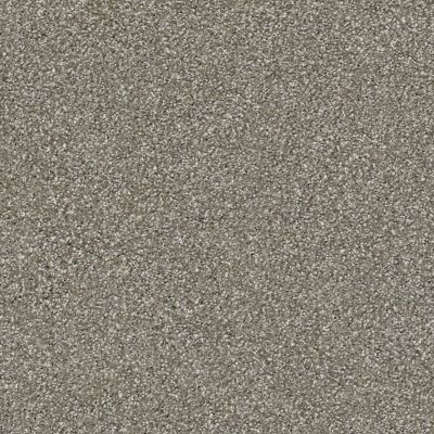 Shaw Floors Value Collections Save The Date Net Castle Grey 00570_E9670
