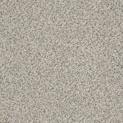 Shaw Floors Foundations Elemental Mix I Net Silver Lining 00572_E9677