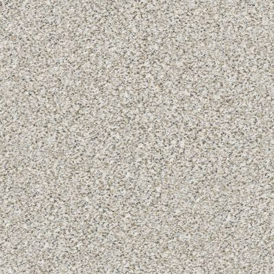 Shaw Floors Foundations Elemental Mix II Net Whitewash 00177_E9678