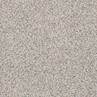 Shaw Floors Foundations Elemental Mix III Net Snowbound 00178_E9679