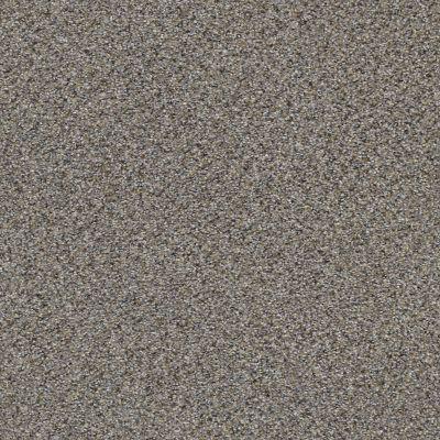 Shaw Floors Foundations Elemental Mix III Net Antique Pin 00571_E9679