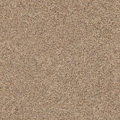 Shaw Floors Foundations Elemental Mix III Net Arrowhead 00770_E9679
