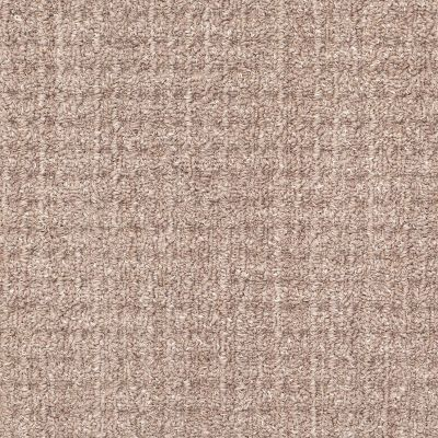 Shaw Floors Foundations Natural Boucle 15 Net Slate 00500_E9680