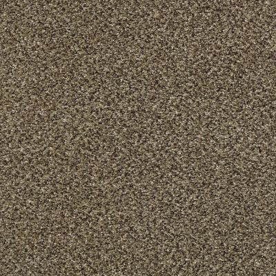 Shaw Floors Bellera Perpetual I Leather 00704_E9692
