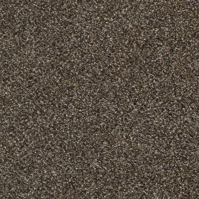 Shaw Floors Bellera Perpetual II Oatmeal 00108_E9693