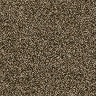 Shaw Floors Bellera Perpetual II Gold Rush 00200_E9693