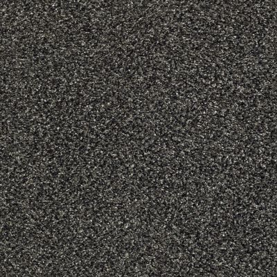 Shaw Floors Bellera Perpetual II Truffle 00506_E9693