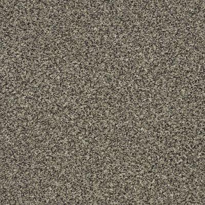 Shaw Floors Bellera Perpetual II Portobello 00703_E9693