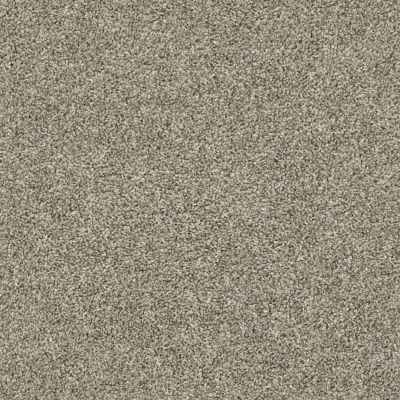 Shaw Floors Shake It Up (t) Owl 00121_E9698