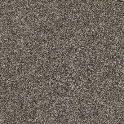 Shaw Floors Shake It Up (t) Hammerhead 00521_E9698