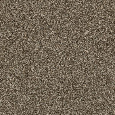 Shaw Floors Shake It Up (t) Roasted Coffee 00721_E9698