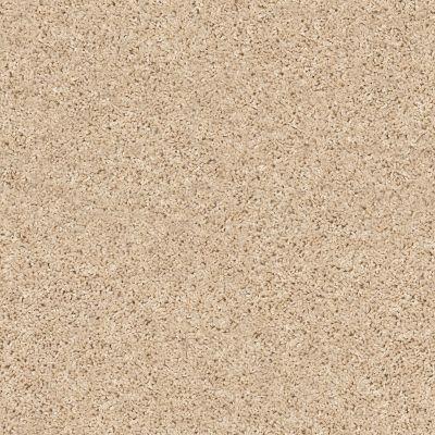 Shaw Floors Shake It Up (s) Desert Sand 00210_E9699
