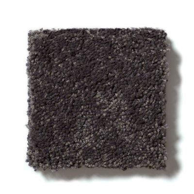 Shaw Floors See The World III Classic 12′ Dark Grey 00531_E9712