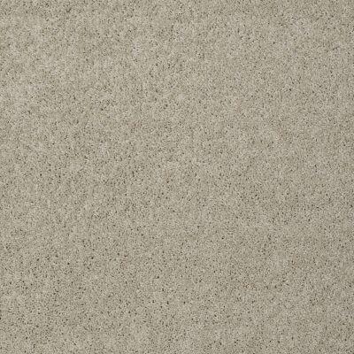 Shaw Floors Foundations Keen Senses I Barista 00191_E9714
