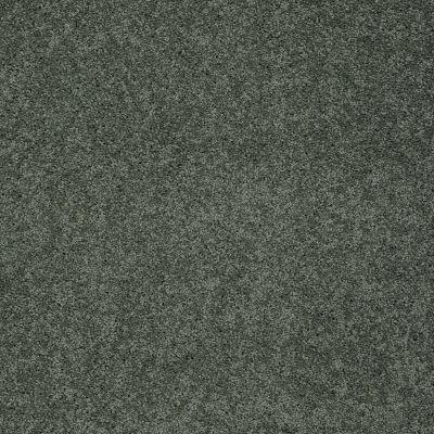Shaw Floors Foundations Keen Senses I Lush Garden 00391_E9714