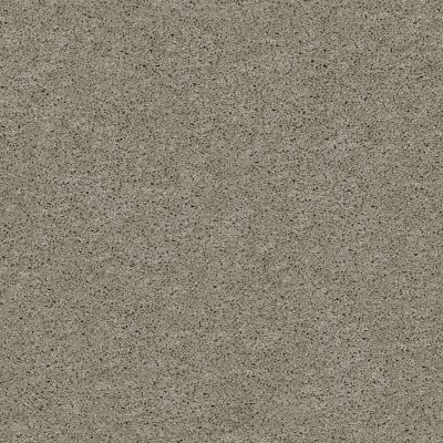 Shaw Floors Foundations Keen Senses I Slate 00570_E9714