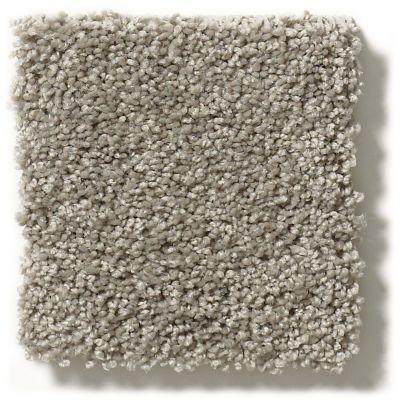 Shaw Floors Foundations Keen Senses I Slate 00570_E9714
