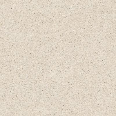Shaw Floors Foundations Keen Senses II Alabaster 00172_E9715