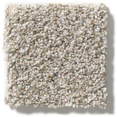 Shaw Floors Make It Work Cobble Stone 00573_E9716