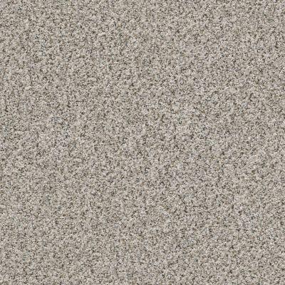 Shaw Floors Make It Work Stormy 00580_E9716