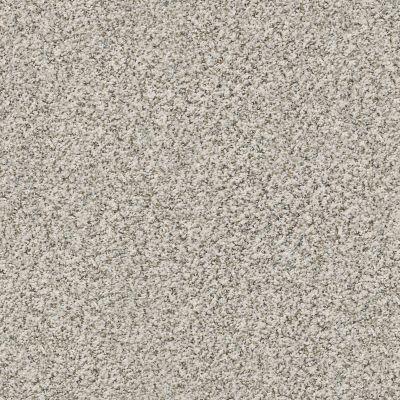 Shaw Floors Match Point Heirloom GF00780_E9716