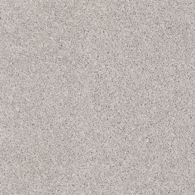 Shaw Floors Foundations Always Ready I Studio Taupe 00194_E9717