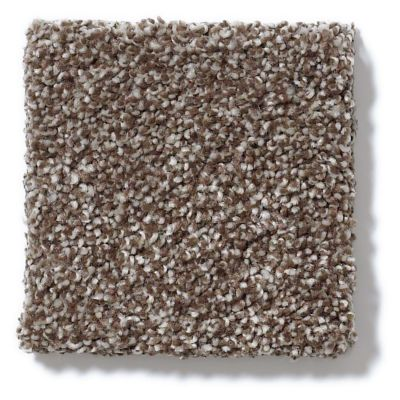 Shaw Floors Foundations Always Ready I Cobble Brown 00798_E9717