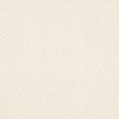 Shaw Floors Foundations Infallible Instinct Crisp Linen 00171_E9721