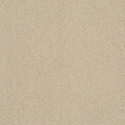 Shaw Floors Infallible Instinct Studio Taupe 00173_E9721