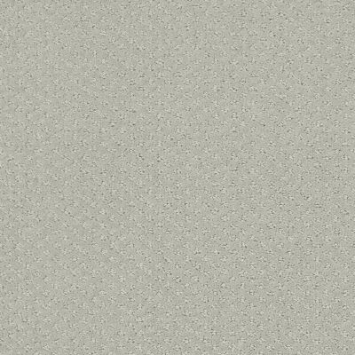 Shaw Floors Foundations Infallible Instinct Offshore Mist 00477_E9721
