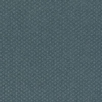 Shaw Floors Infallible Instinct Voyage 00480_E9721