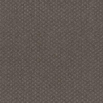Shaw Floors Infallible Instinct Front Gate 00773_E9721