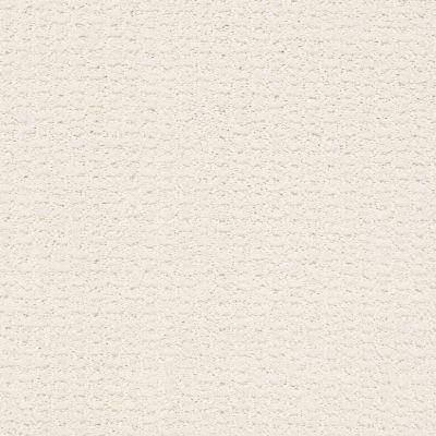 Shaw Floors Complete Control Crisp Linen 00171_E9722