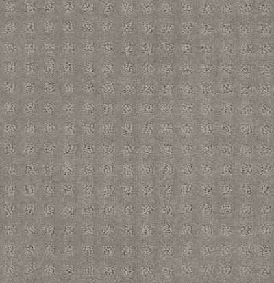 Shaw Floors Foundations Alluring Disposition Slate 00570_E9724