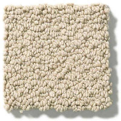 Shaw Floors Foundations Smart Thinking Espresso 00192_E9725