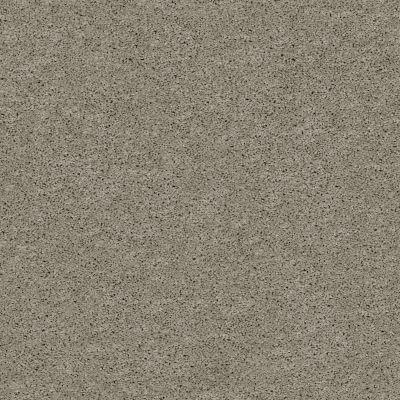 Shaw Floors Foundations Keen Senses I Net Slate 00570_E9767