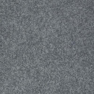 Shaw Floors Foundations Keen Senses I Net Night Club 00592_E9767