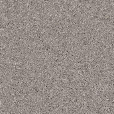 Shaw Floors Foundations Keen Senses II Net Slate 00570_E9768